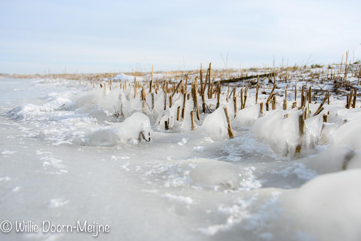 Ringvaart ijspret